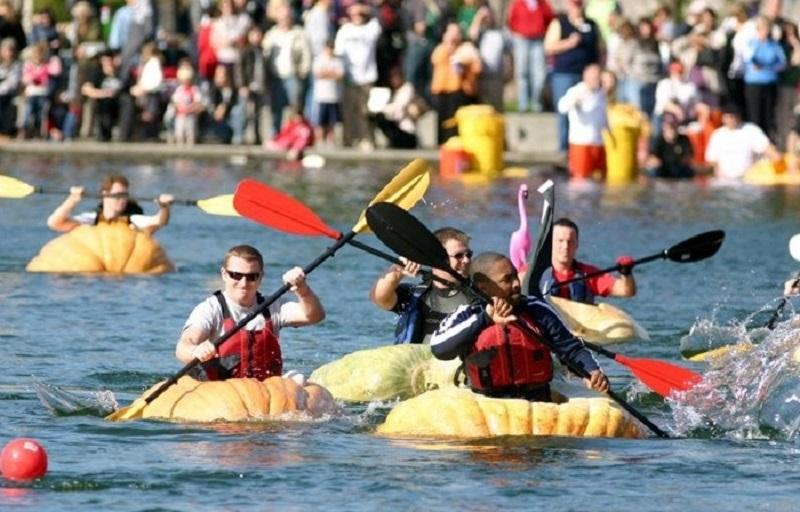 pumpkin regatta